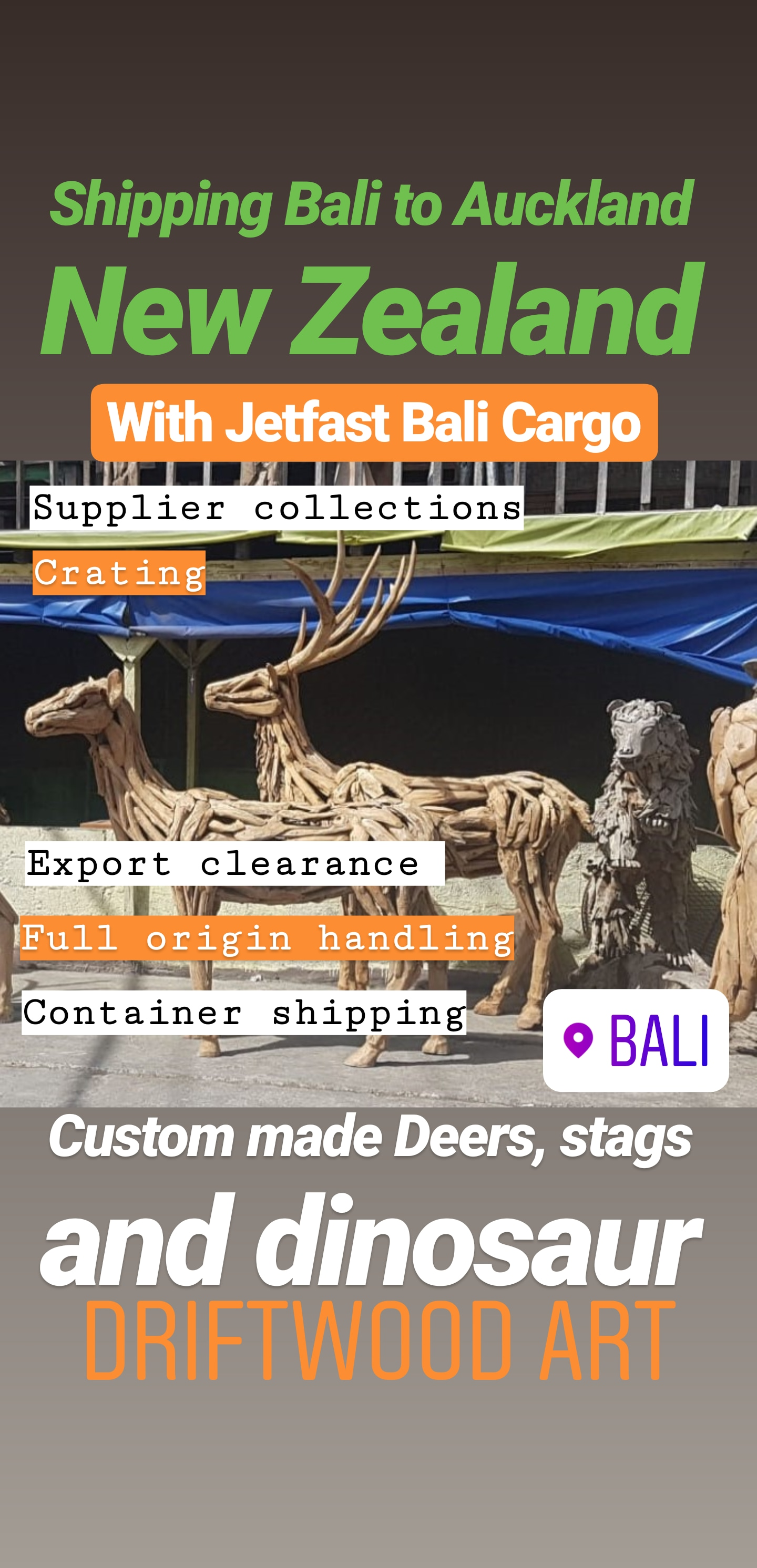 Bali Driftwood